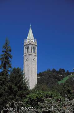 Sather Tower - The Campanile