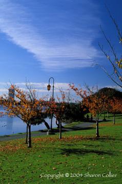 Autumn at Lake Merritt