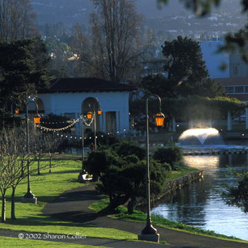 Pearls of Lake Merritt