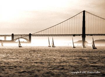 Sailboat Race at Golden Gate Bridge