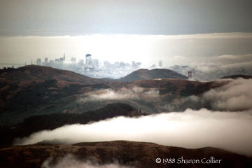 Foggy San Francisco Bay