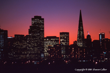 Dusk over the San Francisco Skyline