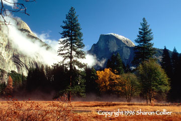 Half Dome - Yosemite Valley