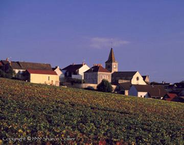 Monthelie Village
