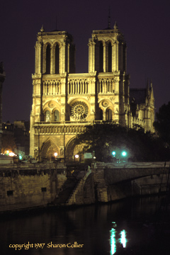 Night View of Notre Dame
