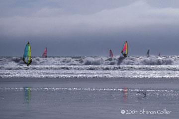 California Windsurfers