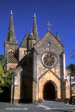 Collegiate Church of Neuchatel
