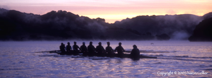 Cal Crew at Sunrise Workout