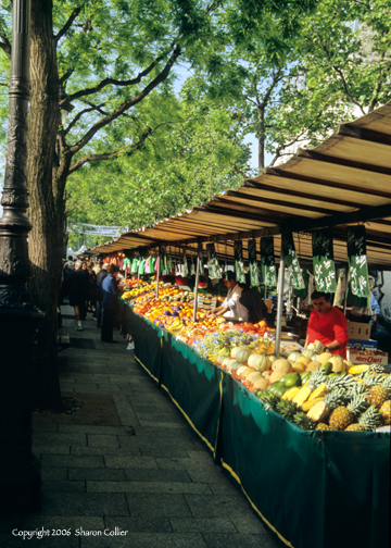 Early Morning at the Paris Market