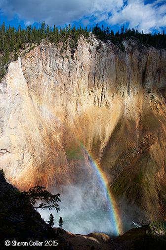 Misty Rainbow at Yellowstone