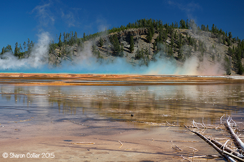 Rainbow Steam at Grand Prismatic Spring