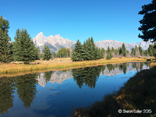 Reflections at Teton