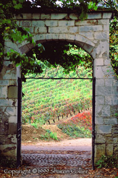 Burgundian Gate