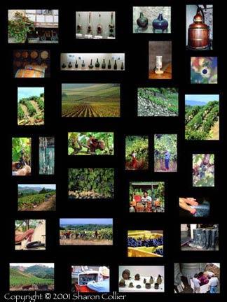 Harvest Collage