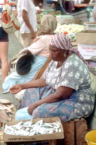 Fishmonger of Curacao