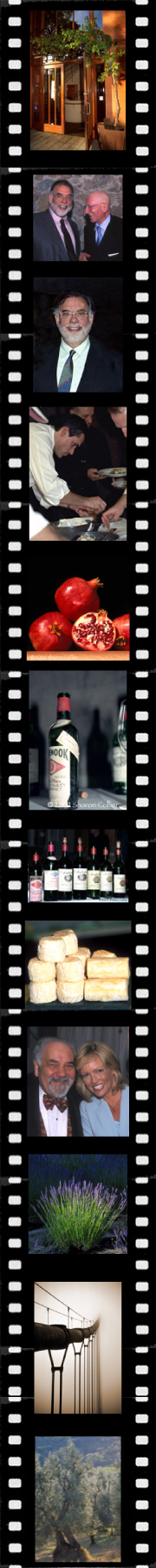 Filmstrip with commercial images by Sharon Collier